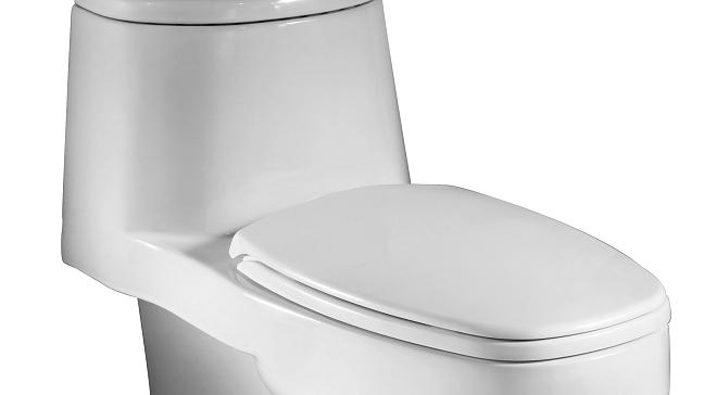 Taza De Baño | Estas Son Las 10 Cosas Que Nunca Deberias Tirar A La Taza Del Bano