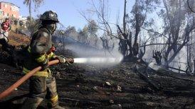 El incendio en Hijuelas comenzó el 23 de diciembre.