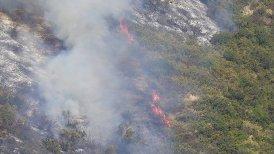 El fuego ha consumido hasta ahora ocho hectáreas de vegetación.
