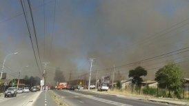 Conaf y Bomberos trabajan en el lugar para evitar que el fuego alcance más viviendas.