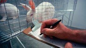 """El sitio del CPAL asegura que los animales producidos son """"requeridos por la institución para fines de controles, vigilancia y diagnóstico""""."""