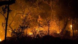"""Un decreto firmado por el presidente brasileño, Michel Temer, amplió el área de conservación del Parque de la """"Chapada dos Veadeiros"""" hasta las 240 mil hectáreas."""