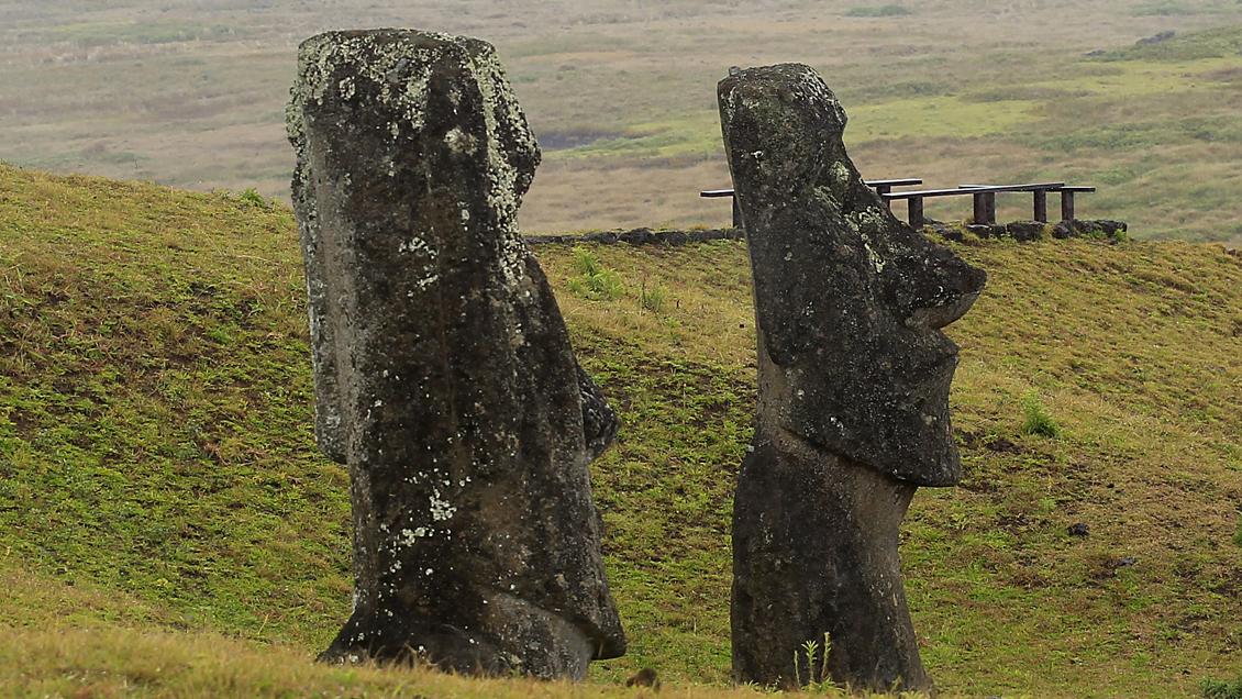 Comunidad Ma'u Henua pidió que Viña del Mar y La Serena devuelvan moais a Rapa Nui