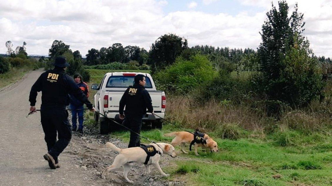 Detectives buscan pistas para encontrar a mujer desaparecida desde agosto en Los Muermos