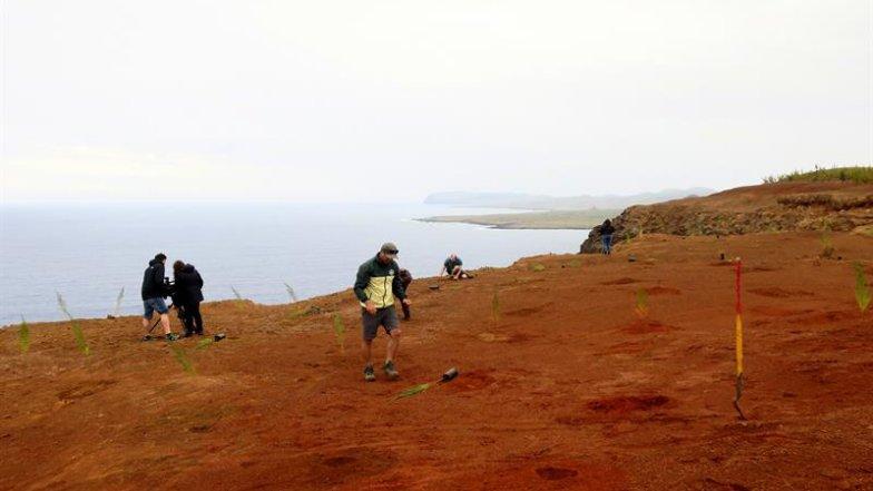 Ciudadanos trabajan en la reforestación de la zona del volcán Poike (Foto: EFE)