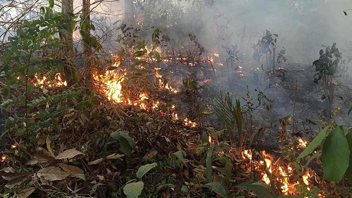 Evo Morales agradeció a Chile por ofrecer ayuda para enfrentar incendios en la Amazonía
