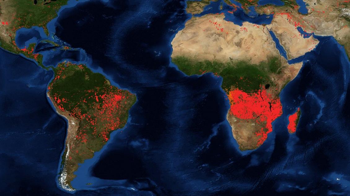 Incendios forestales en África ya superan en extensión a los del Amazonas