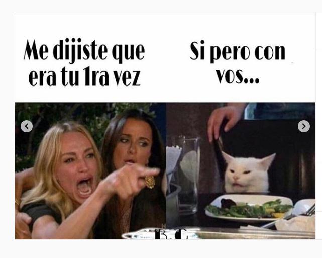 Fotos Se Descontrolo El Meme Del Gato Blanco Desatado En La Red