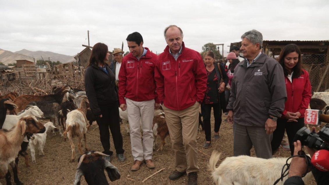 Decretan zona de emergencia agrícola por sequía en Atacama