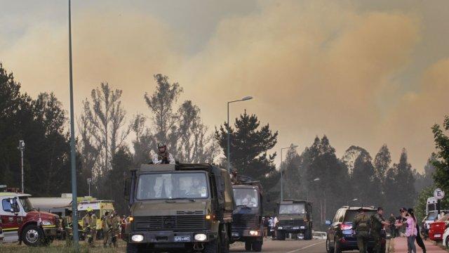 Intendente de la Región de Valparaíso: Bomberos vio a encapuchados generando incendio forestal - Cooperativa.cl