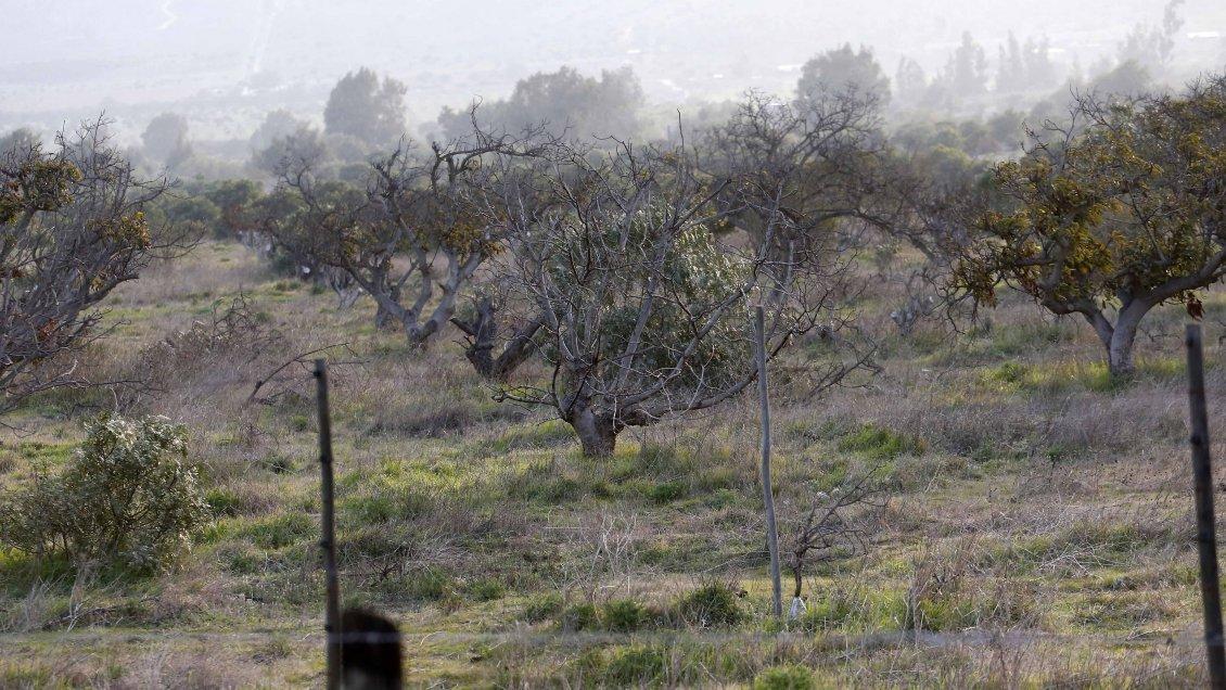 Agrupaciones rurales de Petorca llaman a derogar el Código de Aguas