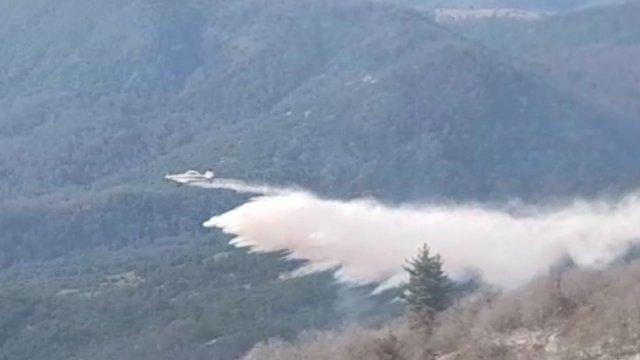 Incendio forestal en Curicó está contenido: van 47 hectáreas quemadas